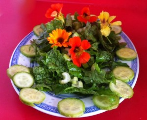 jayden's edible salad 20140619